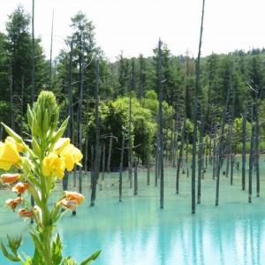青池と白髭滝