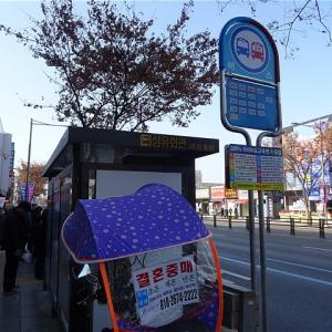 大邱市 繊維会館前バス停(西門市場駅・大邱、慶山市内バス)