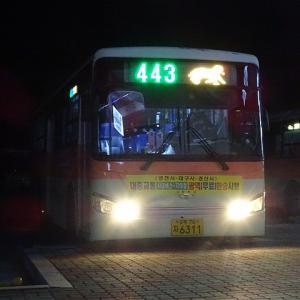 永川BTから永川駅へ市内バスで移動! 永川市内バス443番 共用バスターミナル→永川公設市場