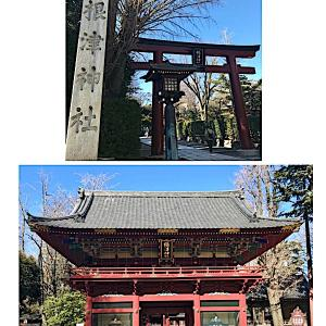 谷根千〜上野動物園デート