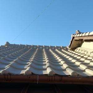 屋根のペンキぬりだいぶ終わりました