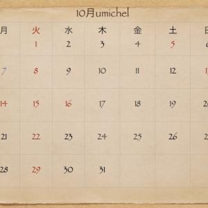 11月のホットペッパービューティ  ご予約解禁☆