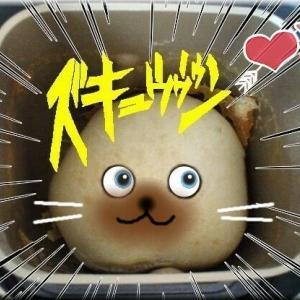 パン工房~新作発表
