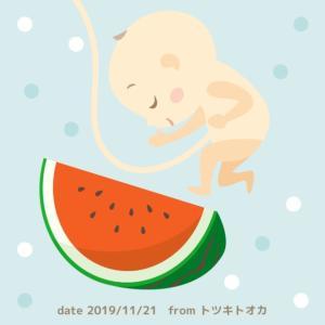 【妊娠中期】マイナートラブルと世間の声