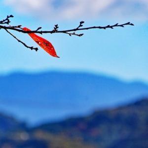 満洲の秋から冬へ