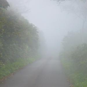 9月中旬のヒメオオ 3/5 堕落の霧ヒメ採集