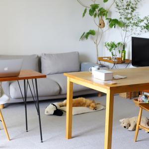 【リビング】最近の家具の配置と愛用品