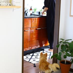 フカフカなのに乾きも早い、オシャレなキッチンマット♪