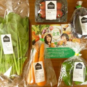 「金麦(糖質75%オフ)の絶対もらえるキャンペーンのOisixの野菜は絶対にお得!」