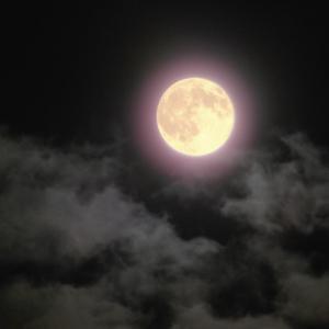 実りと感謝の日。満月