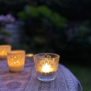 キャンドルの灯りと、植物に癒されるひととき。