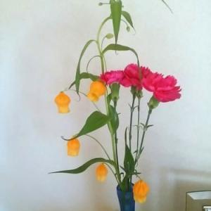 久し振りに切り花を買いました。
