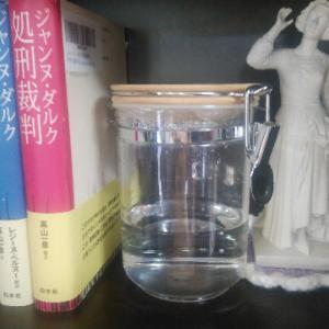 ドンレミ村の奇跡の泉と私の宝物について~ジャンヌを巡る旅・5日目