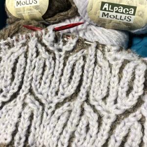 ブリオッシュ編みのマフラー。