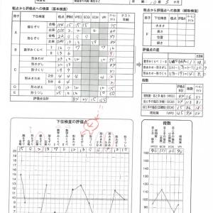 【次男】ビジョントレーニング WAVES 解析編①