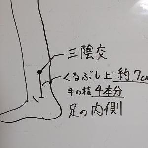 イキやすい身体と子宮の温度 【オーガニックス感想考察】