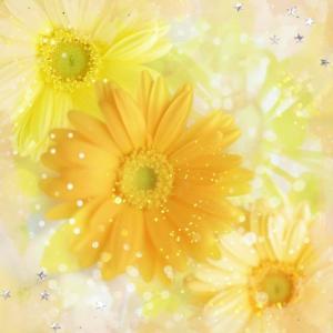 Happy Birthday DEAR.HIKARU