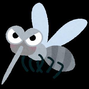 季節外れな蚊の襲撃に悩まされております。