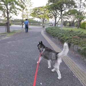 大濠公園散歩
