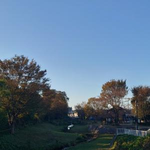 今朝の散歩は里山コース^^