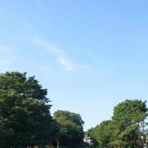 梅雨明けの朝さんぽは水辺のコース^^