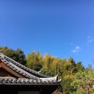 19年振りのお礼参り、お返ししたかったお札は3秒で…1DayTrip@京都・嵐山【その1】
