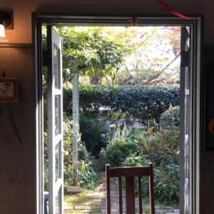 居心地のいい場所を見付けて、存分にしたいことをする…1DayTrip@京都・嵐山【その2】