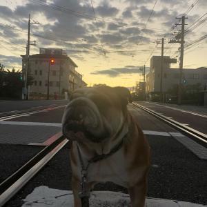 9月24日の朝散歩は朝焼け空