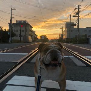 9月9日の朝散歩は朝焼けが綺麗でした