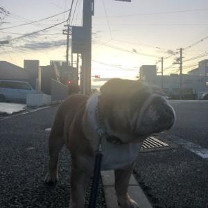 10月1日の朝散歩