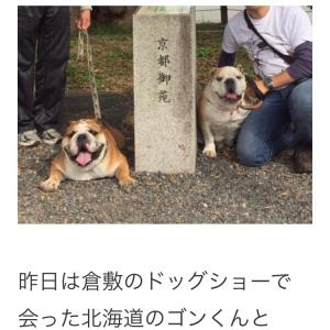"""10月23日の朝散歩と""""北海道からのお友達"""""""