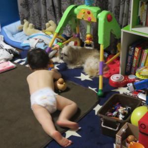 1歳8ヶ月健診