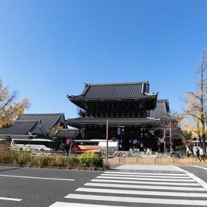 東本願寺と銀杏