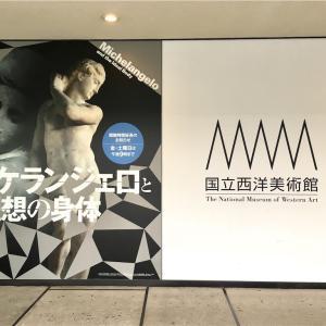 ミケランジェロと理想の身体@国立西洋美術館は夜は混雑無し!二体の彫刻の顔が良かった!