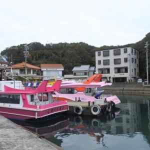 英虞湾クルーズ☆豪華な大船と漁船みたいな小舟、どっちを選ぶ?