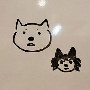 娘的犬人間化。