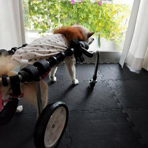 四輪車椅子の使い方。