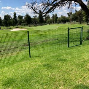 1ヶ月閉鎖していた、ゴルフ場が、再開!トゲを踏んで、泣き叫んだチビ。