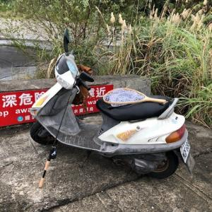 台湾釣査008 紅白歌合戦は外せない