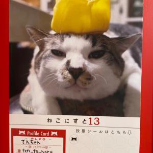 ねこにすとのプロフィールカード!