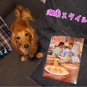 『湘南スタイル magazine 11月号Vol.79』