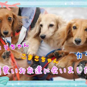 合同お誕生日会!!