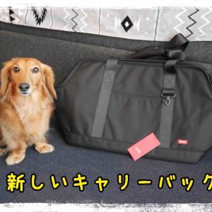 新しいキャリーバッグ