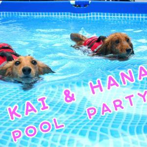 KAI & HANA POOL PARTY!!