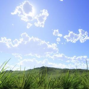 今日のマヤ暦「ピンときたものを残しましょう」KIN102 白い風・黄色い人・音11