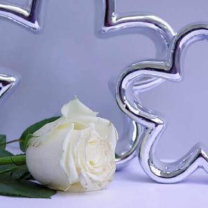 今日のマヤ暦「感謝の気持ちがチャンスを運んでくる日」KIN126 白い世界の橋渡し・白い鏡・音9