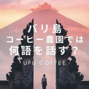 バリ島のコーヒー農園での言語は・・・?