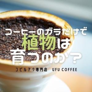 コーヒーのガラだけで、植物は育つのか?