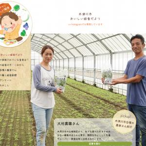 木津川市城山台 給食続報✨新聞・Webサイト公開しました! #木津川市の学校給食を考える会
