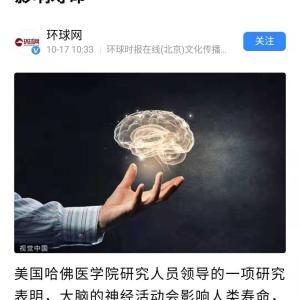 ハーバード大学で研究では、大脳の疲れは寿命と関連があると
